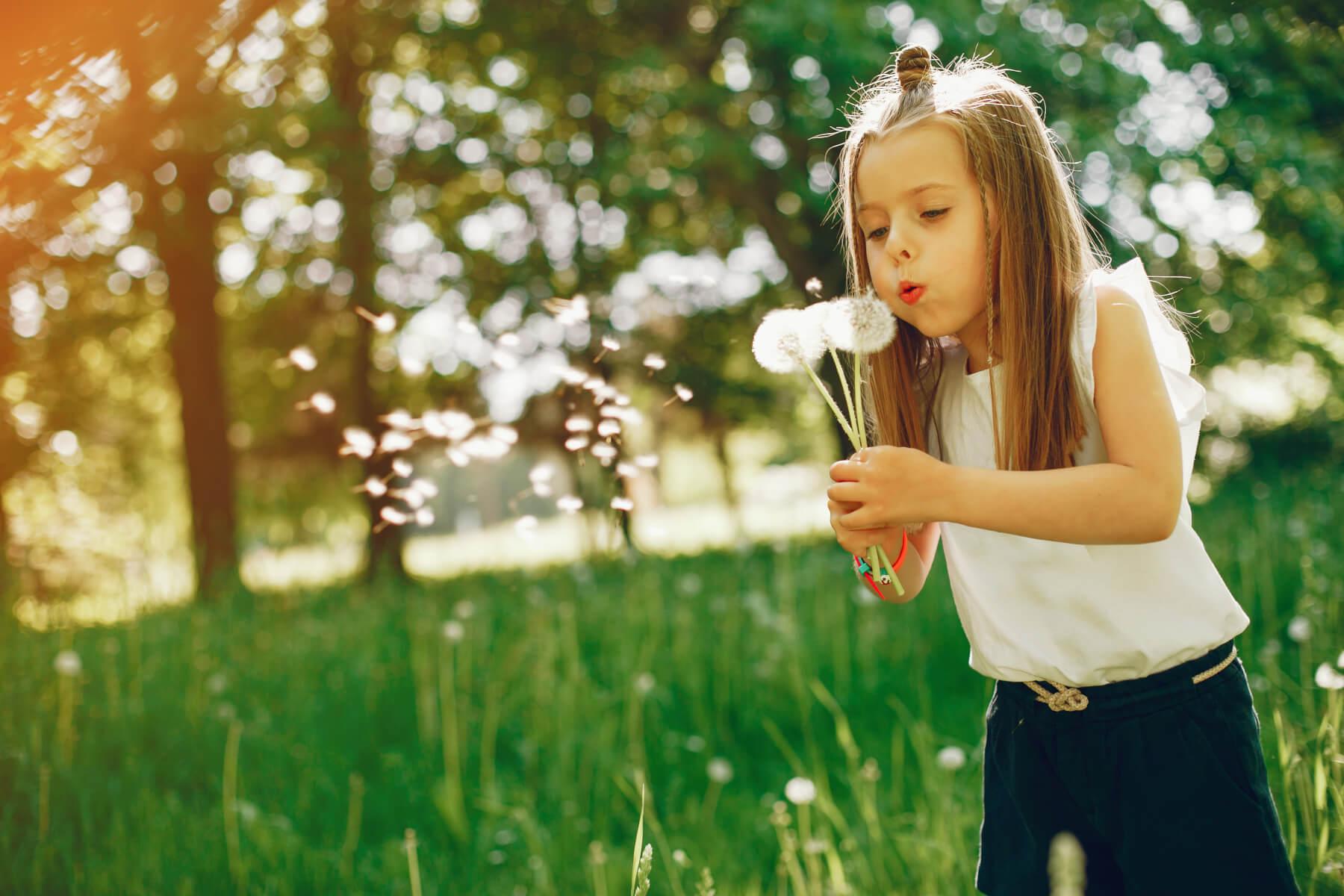 pitajmamu-alergije-na-pelud