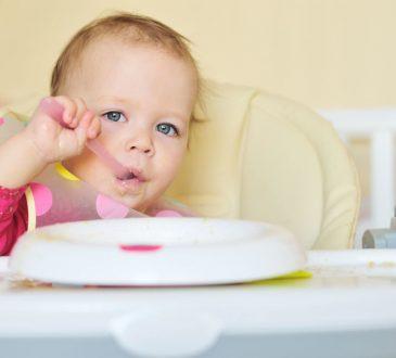 razvoj bebe, 12 mjeseci