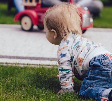 razvoj bebe, osam mjeseci