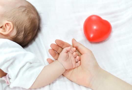 Pitajmamu E Novorodence